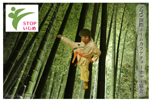 NPO国際ホームカラテティーチャートップイメージ